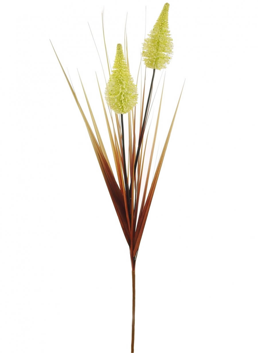 Tall Grass with Cones