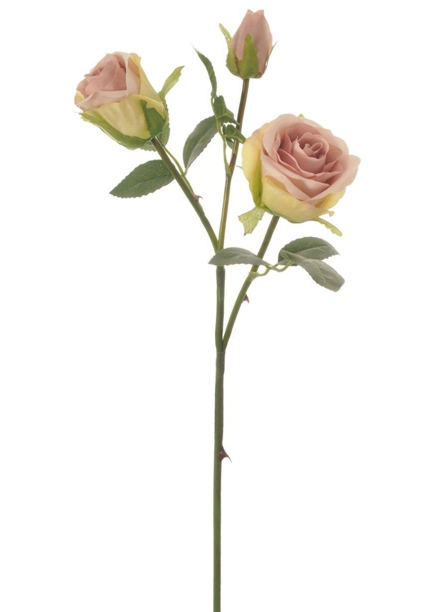 Savanna Rose - NEW COLOURS