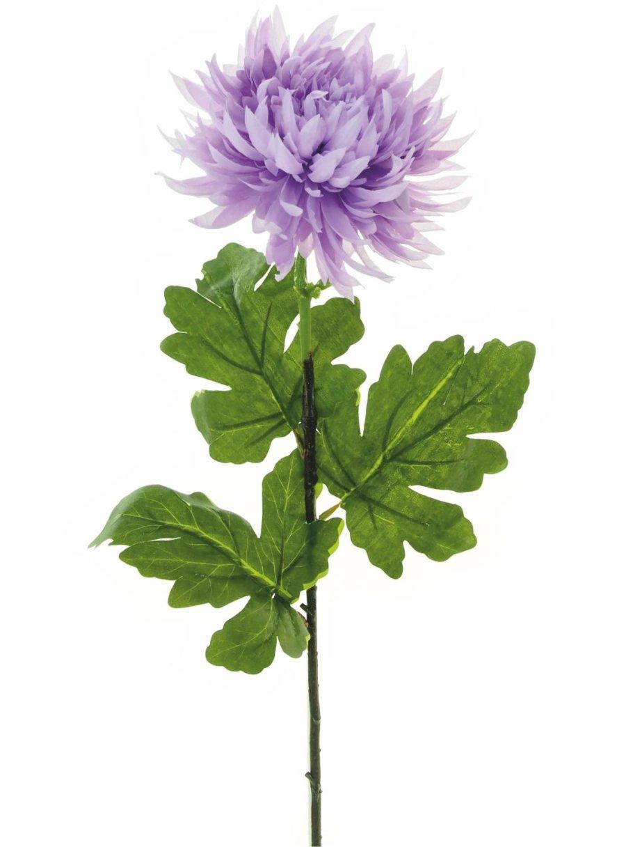 Spikey Mum Flower