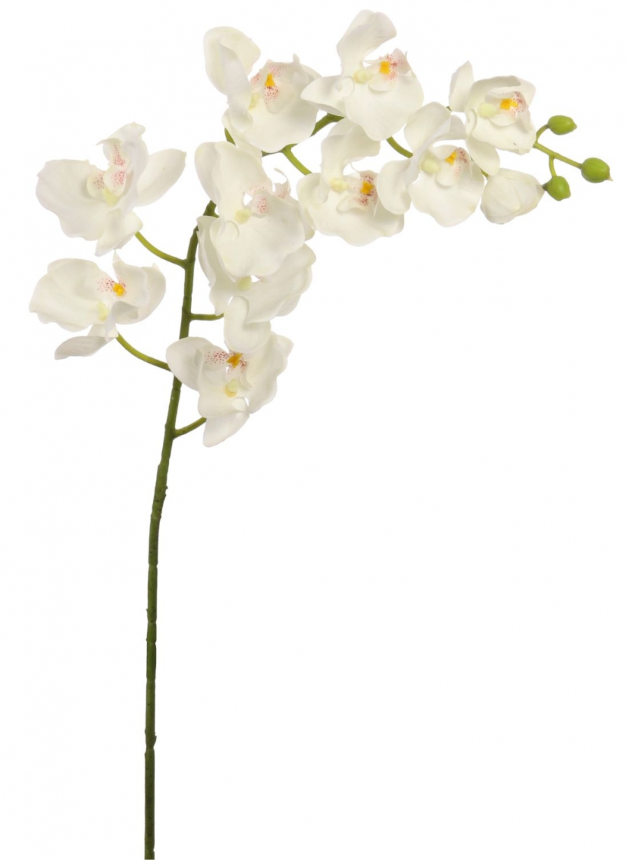 Real Touch Moth Orchid