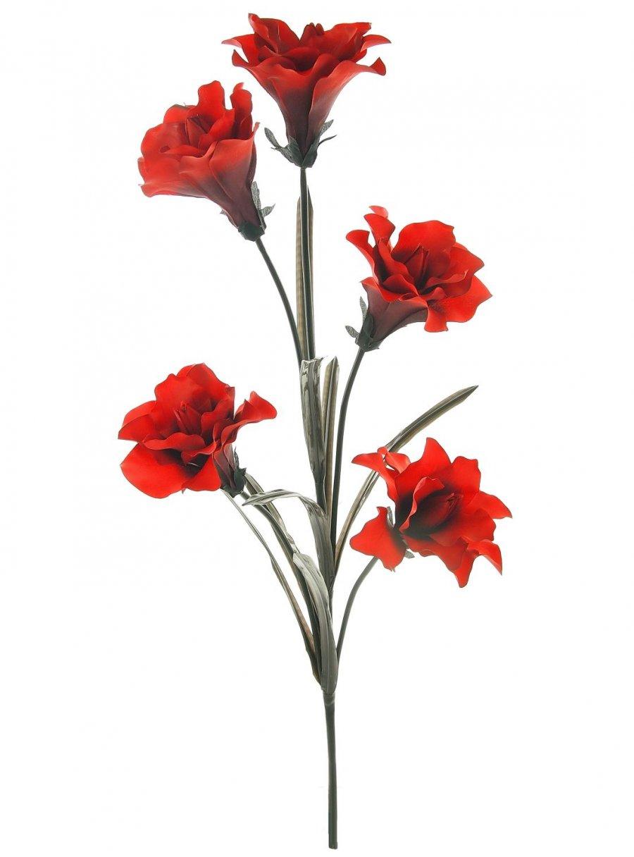Open Lily Lotus Imports Ltd